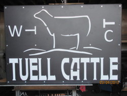 Tuell Cattle