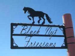 Black Nyt Friesians Sign