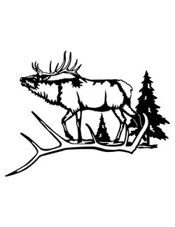 Elk and Antler