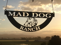 Mad Dog Ranch