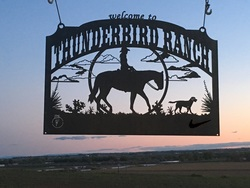 Thunderbird Ranch