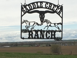 Saddle Creek Ranch sign
