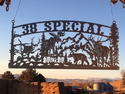 38 Special Sign