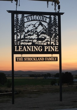 Welcome Leaning Pine Sign